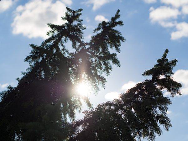 Asuntomessut, Kouvola, luontoyhteys